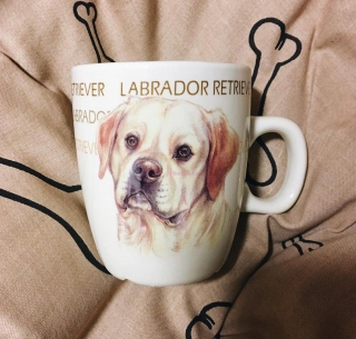 Hrnek Labrador 150 ml